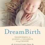 BK03773-DreamBirth-published-cover