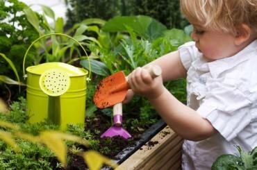 Simplify Your Garden