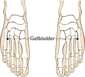 09_gallbladder