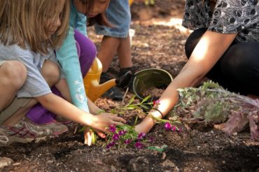 7 Ways To Get Kids Outdoors In Fall